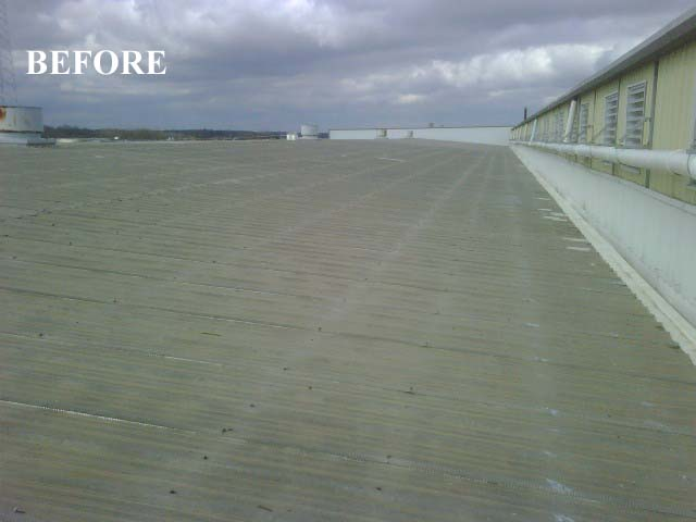 Tpr Federal Mogul Tn Roof Repairs Amp Coating Dunn